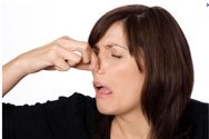 Google%20Image%20Result%20for%20http___www.blogcdn.com_www.diylife.com_media_2010_08_woman-holding-nose-smell-590kb080910.jpg