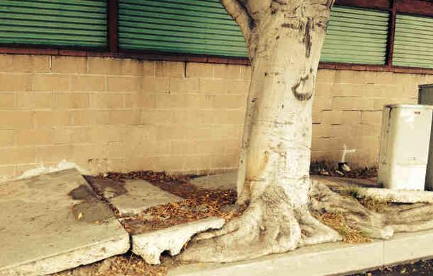 Los_Angeles_Broken_Sidewalks_-_Google_Search.png