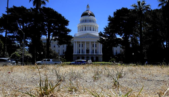 brown_grass_at_California_state_capitol_-_Google_Search.png